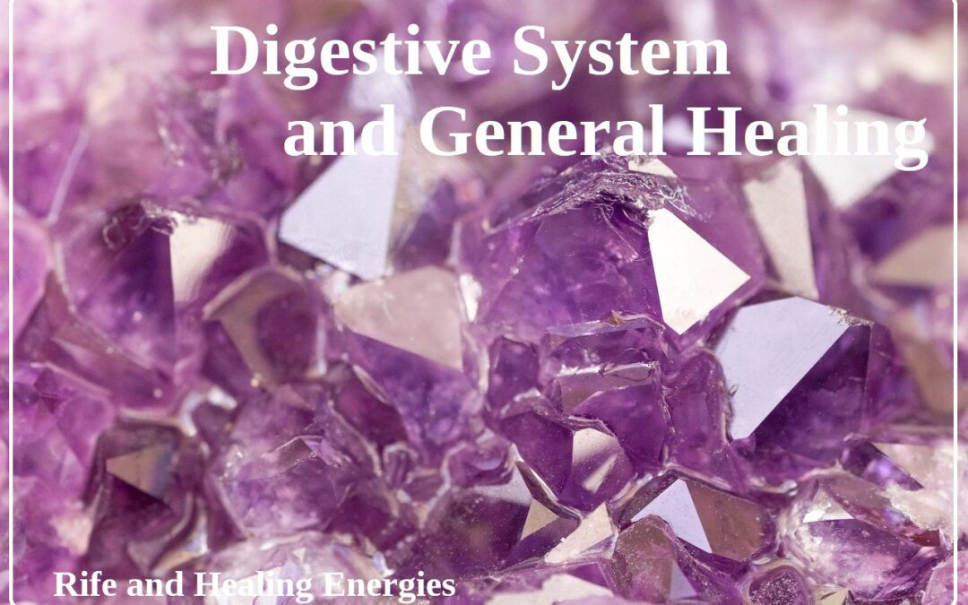 Digestive System & General Healing Package (Rife, Energies)
