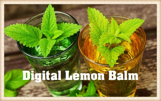 Digital Lemon Balm (Melissa officinalis – L.)